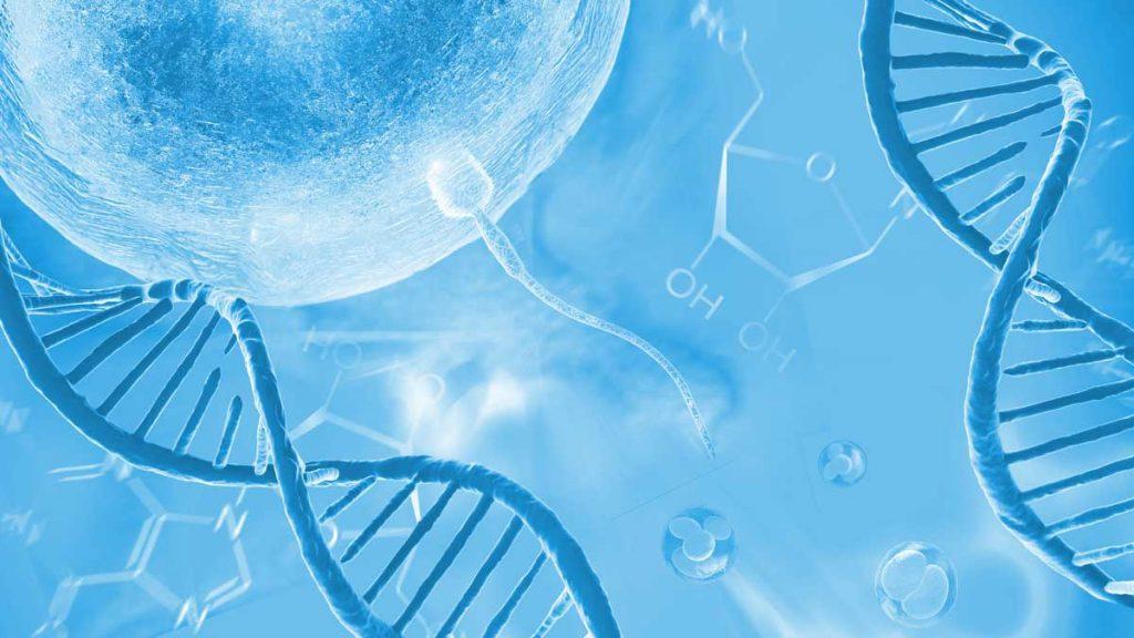 ДНК фрагментация и SDI тест